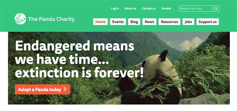 White Fuse creates new website platform for small charities