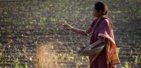 Farmer spreading organic compost. (PRNewsFoto/C&A Foundation)