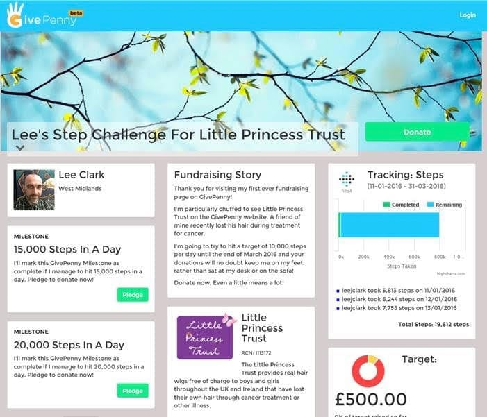 Lee's Step Challenge for Little Princess Trust - campaign on GivePenny